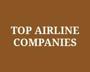 India Domestic Airline Companies