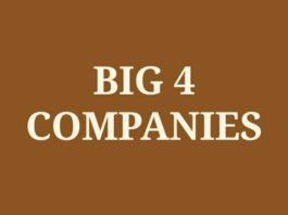 Big 4 Four Companies in India