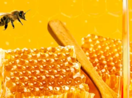 Best Top Pure Raw Honey brand in India