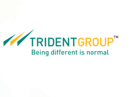 Trident Ltd Group Products