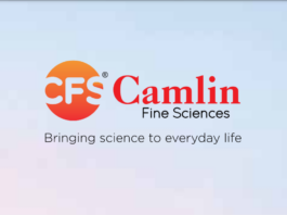 Camlin Fine Sciences ltd Multibagger